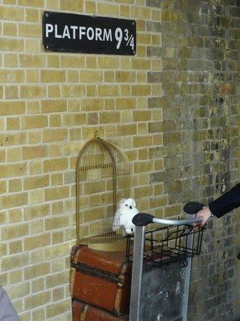 Ibis London Euston St Pancras: dentro la stazione