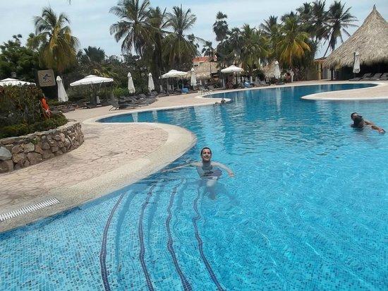 Hesperia Playa El Agua : Hermosas piletas!