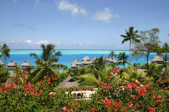Bora Bora Photo Lagoon : Chalets sur pilotis