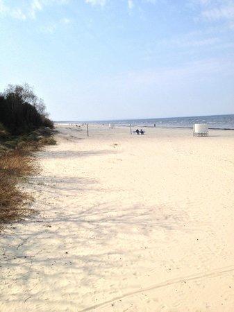 Baltic Beach Hotel & SPA: The Beach
