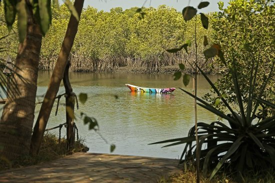 Mandina River Lodge: Ornamental Canoe