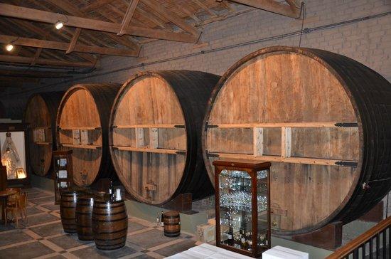Bodega La Rural Wine Museum