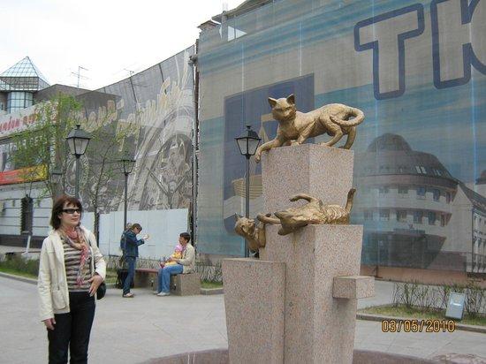 Siberian Cats Park