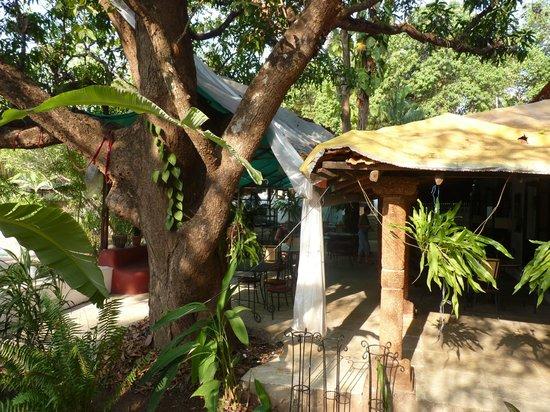 Laguna Anjuna: salle a manger extérieure