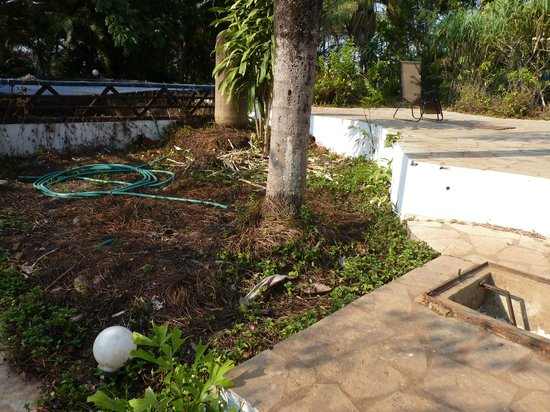 Laguna Anjuna: abords piscine