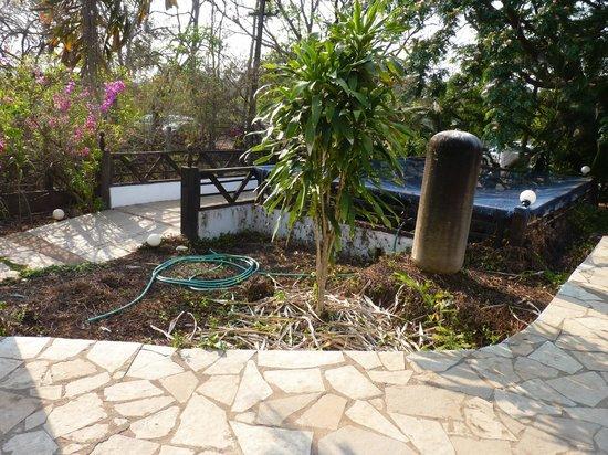 Laguna Anjuna: abors piscine