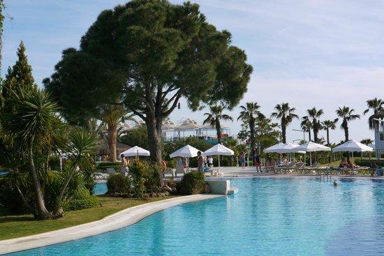 Jacaranda Club & Resort: Основной бассейн ,вид из бара.