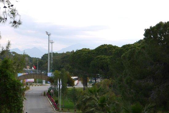 Jacaranda Club & Resort: Вид из номера основного корпуса