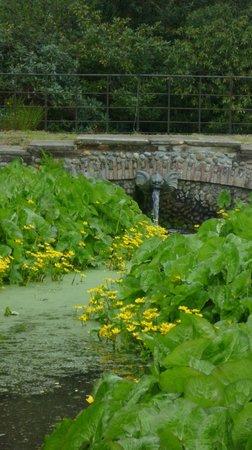 Hoveton Hall Gardens: Gargoyle Bridge