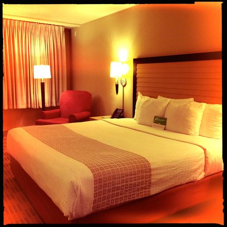 La Quinta Inn & Suites Elmsford: Room