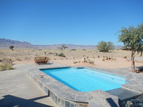 Desert Camp: Pool area