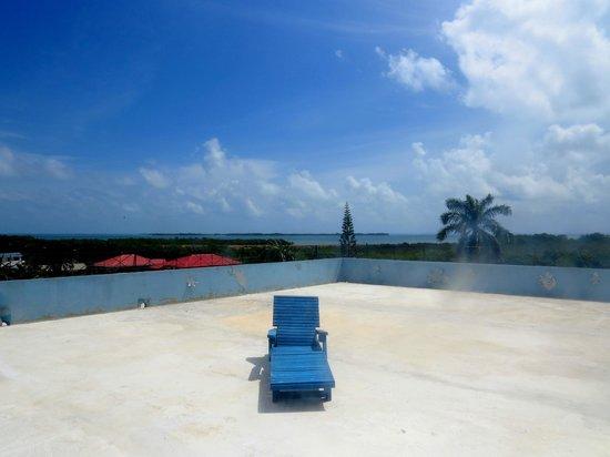 Bachelor Inn: Le toit / Roof top