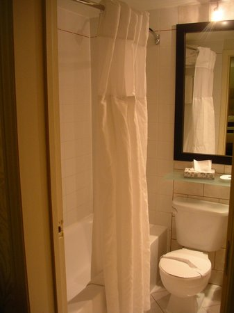 Best Western Plus Montreal Downtown-Hotel Europa : Bathroom shower and toilet