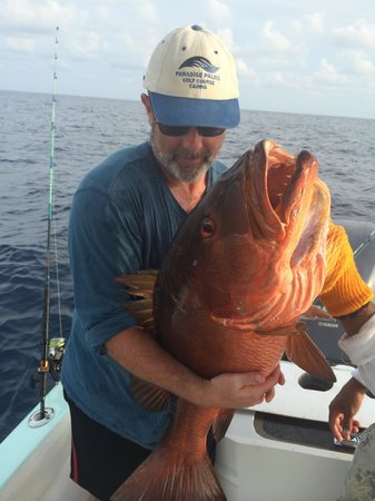 Fish Drake Bay - Reel Escape: Red Snapperzilla