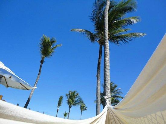 Arraial D'Ajuda Eco Resort: Rede no jardim do hotel