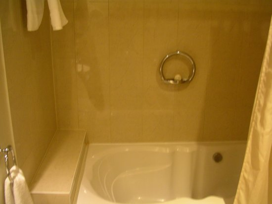 Hotel Nelligan : Big tub and shower