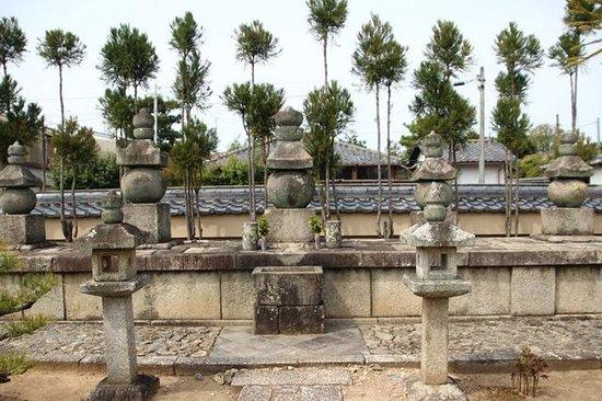 Daitoku-ji Temple: 総見寺信長公一族の墓