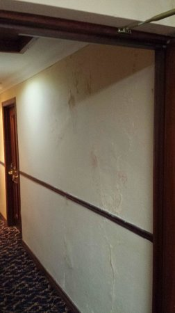 Seaview Hotel: Damp and mould on walls