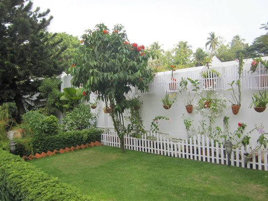 Delight - Fort Kochi: der wunderschöne Innenhof