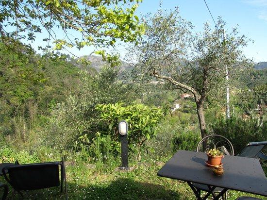 Agriturismo Villanova : Il giardino della ns camera