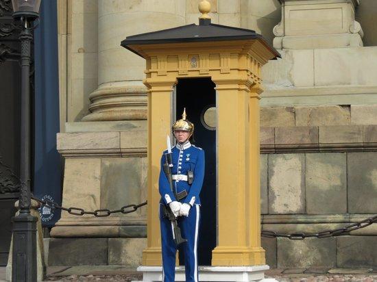 Palais royal : guardia