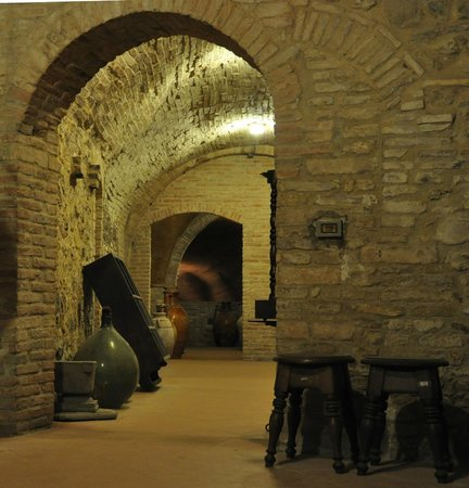 The Cellar of Antique Shop Curini