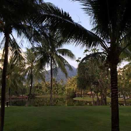 Hilton Phuket Arcadia Resort & Spa : озеро на территории отеля