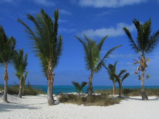 Aquamarine Beach Houses: walking to the beach