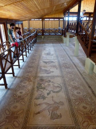Kato Paphos Archaeological Park: Impressive mosaics