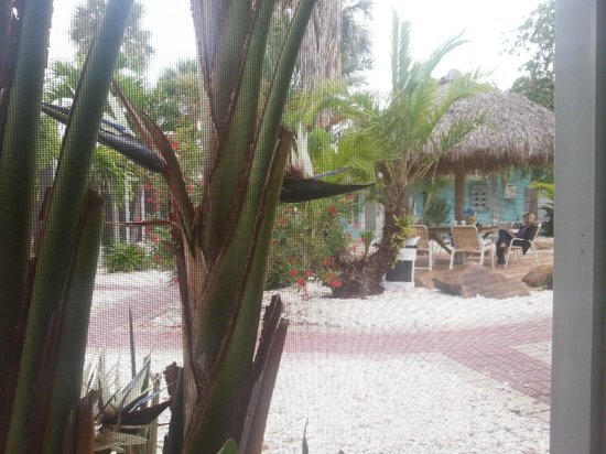 Tropical Breeze Resort: espace commun