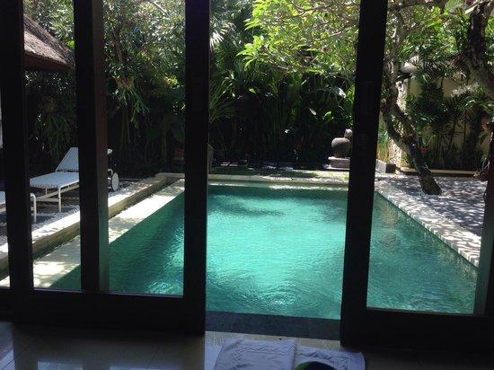 Tiga Samudra Villas: Из спальни открываются большие стеклянные двери! Два шага с кровати и вы в бассейне)