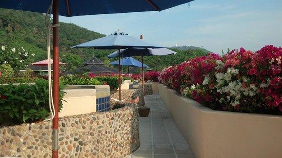 Pacific Club Resort: Pool
