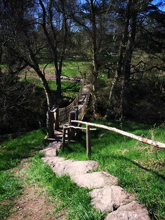 Wooden swing bridge picture of wild northumbrian tipis for Wooden swing set with bridge