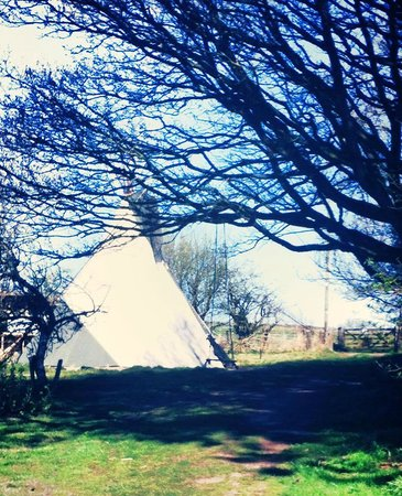 Wild Northumbrian Tipis and Yurts: Our Tipi