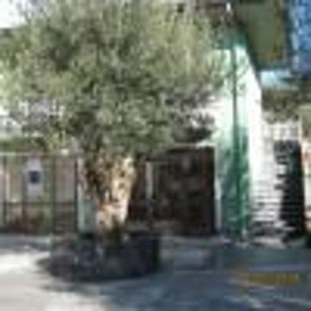 Azienda Agricola Cuntarati Bronte