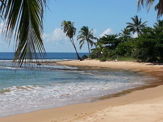 Barra Grande, BA: Três Coqueiros com maré começando a encher