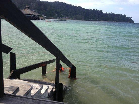 Gayana Marine Resort: Damaged stairs