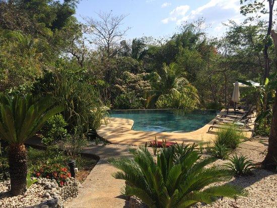 Hacienda Del Sol: Salt water swimming pool.