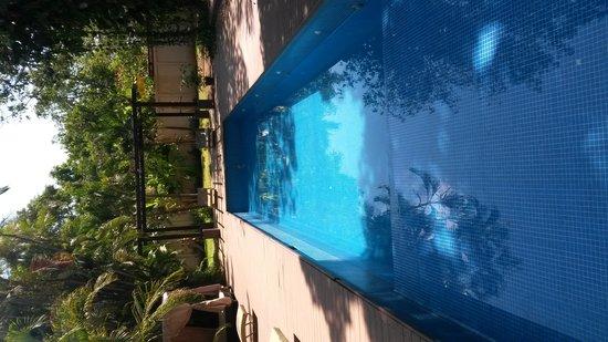 Hotel Contempo : the pool