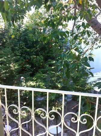 The Aigli : garden