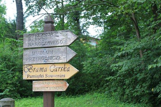 Hotel Zubrowka: указатели в лесу