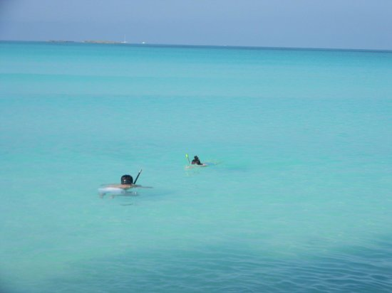 Playa Paraiso: snorkel en p. paraiso