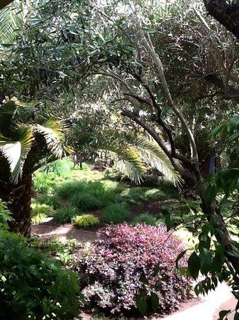 El Pueblo Inn : pretty grounds