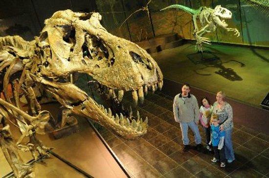 Cartersville, GA: Tellus Science Museum
