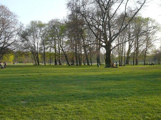 Jardín inglés: Кусочек парка.
