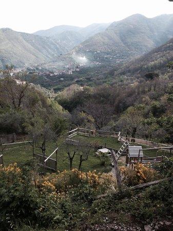 Agriturismo La Casa Del Ghiro: Il parco giochi visto da su