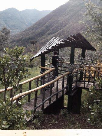 Agriturismo La Casa Del Ghiro: Il ponticello
