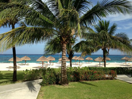 Presidente Inter-Continental Cozumel Resort & Spa: Standing on back porch of beach front room