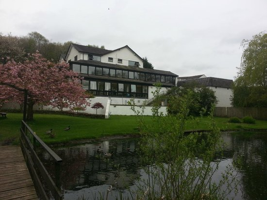 Damson Dene Hotel: Blossom tree.