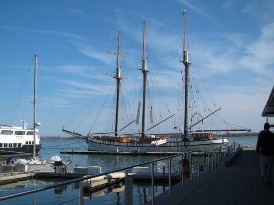 Radisson Admiral Toronto Harbourfront : Harbourfronte